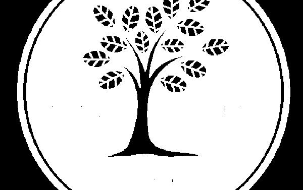 Profile picture of Creation Village School